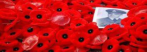 300px-Poppies_by_Benoit_Aubry_of_Ottawa